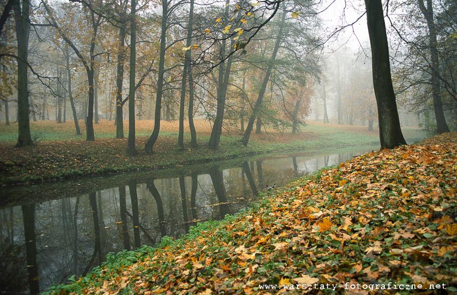 warsztaty fotograficzne - kompozycja - jesień